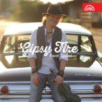 PAVEL ŠPORCL / GIPSY FIRE
